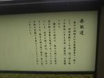 DSC_09191 (19).JPG